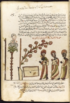 Arabic MS 646 [706]_JRL