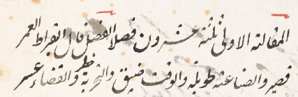 BL MS 6903 - Add MS 6903 Aphorisms Hippocrates