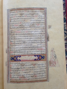 NLW MS 1208D